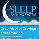 Stop Alcohol Cravings, Quit Drinking with Hypnosis, Meditation, Relaxation, and Affirmations: The Sleep Learning System Audiobook by Joel Thielke Narrated by Joel Thielke