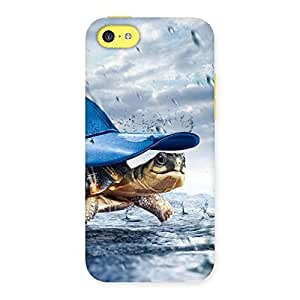Stylish Wow Turtle Multicolor Back Case Cover for iPhone 5C