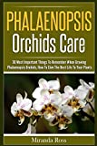 img - for Phalaenopsis Orchids Care: 30 Most Important Things To Remember When Growing Phalaenopsis Orchids, How To Give The Best Life To Your Plants (Orchids Care, ... for Beginners, House Plant Guide Book 1) book / textbook / text book