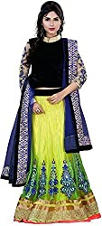 Sargam Fashion Embroidered With Embellished Multicolor Net Traditional Wedding Wear Lehenga Choli Set. - Peacocklehengh