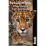 Pantanal Wildlife: A Visitor's Guide to Brazil's Great Wetland (Bradt Travel Guides (Wildlife Guides))by James Lowen