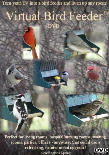 Virtual Bird Feeder