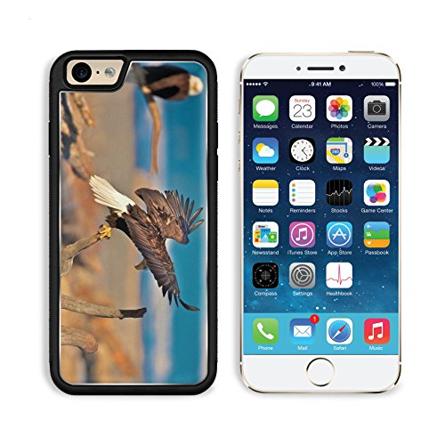 Eagles Birds Branches Sit Swing Wings Predators Apple Iphone 6 Tpu Snap Cover Premium Aluminium Design Back Plate Case Customized Made To Order Support Ready Liil Iphone_6 Professional Case Touch Accessories Graphic Covers Designed Model Sleeve Hd Templat front-939458