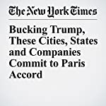 Bucking Trump, These Cities, States and Companies Commit to Paris Accord | Hiroko Tabuchi,Henry Fountain