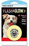 Flash and Glow Jr. Flashing Glowing Dog Ball, Small