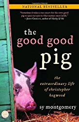 The Good Good Pig- The Extraordinary Life of Christopher Hogwood