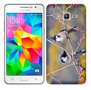 WOW Printed Designer Mobile Case Back Cover For Samsung Galaxy Grand Prime / GRAND PRIME SM-G530