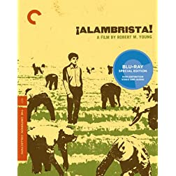 &iexcl;Alambrista! (The Criterion Collection) [Blu-ray]