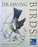 Drawing Birds: An R.S.P.B.Guide (Draw Books) John Busby
