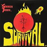 Simmer Down [Vinyl LP]