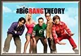 The Big Bang Theory Group Sky TV 36x24 Dry Mount Poster Gold Wood Framed