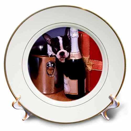 3dRose cp_3113_1 Boston Terrier Satine Porcelain Plate, 8-Inch