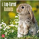 Lop-Eared Rabbits Calendar (Multilingual Edition)