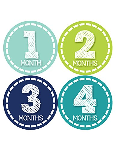 Months in Motion 367 Monthly Baby Stickers Baby Boy Months 1-12 Milestone Photo