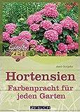 Hortensien: Farbenpracht für jeden Garten (Gartenzeit bei avBUCH)