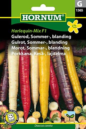 hornum-f1-melange-de-graines-de-carottes-colorees