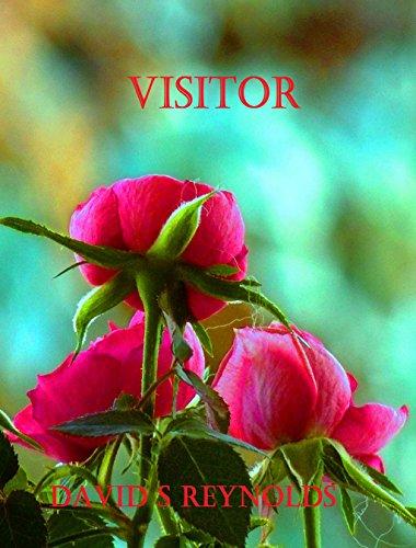 Visitor by David S Reynolds