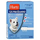 Hartz Ultra Guard Flea & Tick Collar, for Dogs, White, Fresh Scent, 1 collar 0.85 oz (24 g)