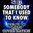 Somebody That I Used to Know (Tribute to Gotye Feat Kimbra) Performed by Cover Nation