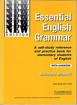Intermediate grammar in use pdf