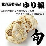 【北海道特産品】 野菜ファン必至 栗のような甘み ゆり根 2kg