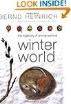 Winter World: The Ingenuity Of Animal...