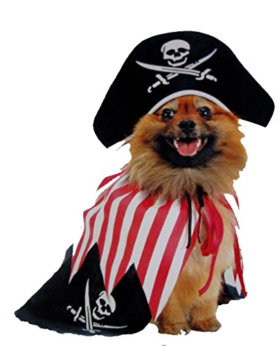 Pirate Costume for Small Dogs