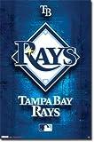 タンパベイ・レイズ MLB(メジャーリーグ) ポスター