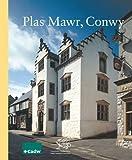 Rick Turner Plas Mawr Conwy