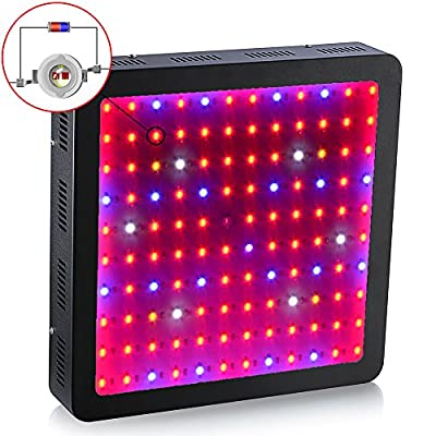 King Plus 1200w Double Chips LED Grow Light Full Specturm for Greenhouse and Indoor Plant Growing and Flowering(10w Leds)