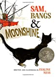Sam, Bangs & Moonshine (Owlet Book) (0805003150) by Ness, Evaline