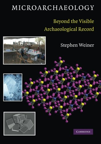 Microarchaeology Paperback