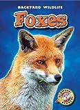 Foxes (Blastoff! Readers: Backyard Wildlife) (Blastoff Readers. Level 1)