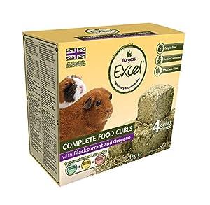 Burgess Excel Food Cubes - Guinea Pig blackcurrant & oregano