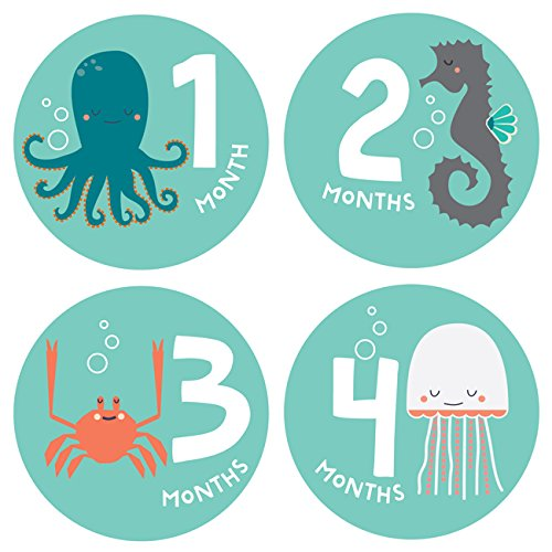 Lucy Darling Baby Monthly Stickers - Gender Neutral - Snorkeling Adventure - Months 1-12