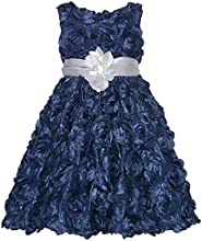 Rare Editions Navy Rosette Silver Flower Girls Christmas Dress 7-16