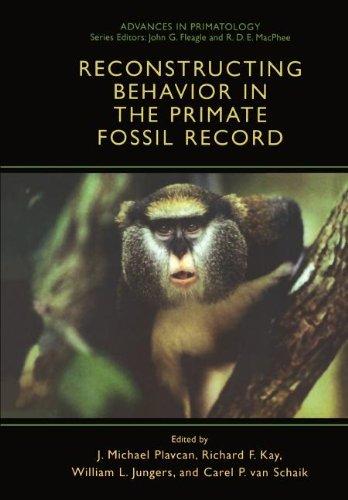 Reconstruction de comportement chez les primates fossiles (avances en primatologie)