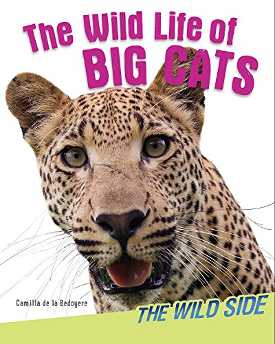 The Wild Life of Big Cats (The Wild Side)