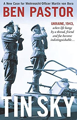 book cover of   Tin Sky