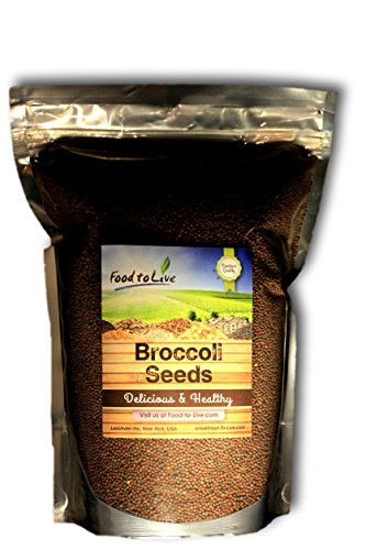 Food To Live Broccoli Seeds (4 Lbs) - Sprouting