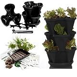 Garden Stacker Planter + Indoor Culinary Herb Garden Kit - Grow Cooking Herbs - Seeds: Parsley, Thyme, Coriander, Basil, Sweet Marjoram, More - Includes Stackable Planter (Black)