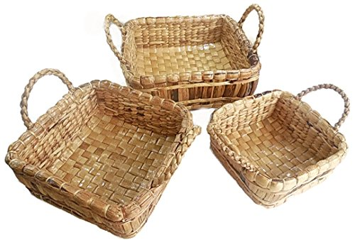 Natural Water Hyacinth Basket with Handles, Set of 3 (Covered Bread Basket compare prices)