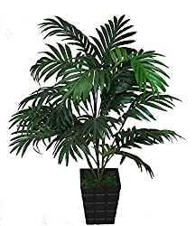POLLINATION ARECA PALM ARTIFICIAL PLANT WITH WOODEN POT
