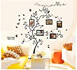 Colorful-Decals© Kiss Birds Trees Hearts Leaves Black Photo Picture Frame Decal Removable Wall Decals Large Wall Stickers Love Quotes & Decorative Painting Supplies & Wall Sticker for Living Room Bedroom Wallpops Decal