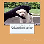 How to Train and Understand Your Labrador Retriever Puppy or Dog | Vince Stead