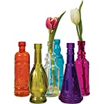 Luna Bazaar Small Vintage Glass Bottle Set (7-Inch, Multicolor Glass, Set of 6) - Flower Bud Vases Bulk - For Home Decor and Wedding Centerpieces