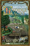 A Brief History of Life in the Middle Ages (Brief Histories) (English Edition)