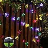 Innoo Tech Multi Colour Party Solar String Lights Powered for Outdoor Garden Patio Window Christmas Wedding(12M 80 Blossom Flower)