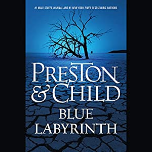 Blue Labyrinth Audiobook