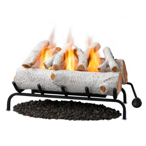 Great Features Of Real Flame 24 Inch Convert-to-Gel Log Set, Birch